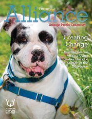 Alliance Magazine Summer 2018