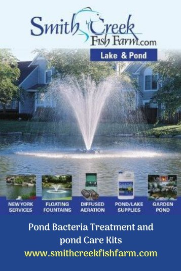 Pond Bacteria Treatment and pond Care Kits