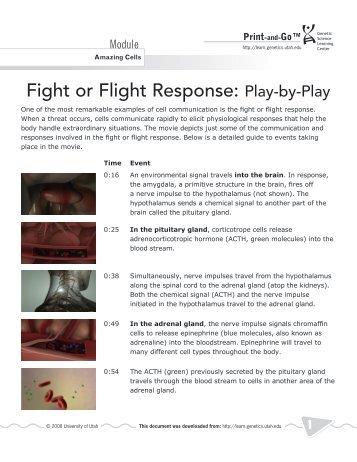 Freeze Flight Fight Fright Faint Adaptationist Cogprints