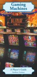 Gaming Machines A Player's Guide - Amity Community Services