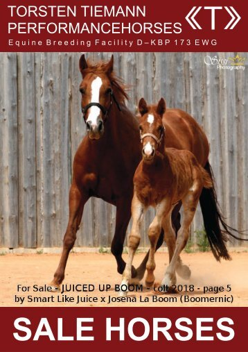 Torsten Tiemann Performancehorses_Sale Catalogue High Quality Reininghorses_20180711