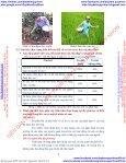 """Bài dự thi vận dụng kiến thức liên môn dành cho HS trung học """"phân đạm, vai trò và tác hại"""" - Page 6"""