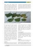 Understanding leaf biochemical traits for Sunflower (Helianthus annuus L.) cultivars grown in chromium stressed environment - Page 6