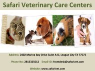 Are you looking for a veterinary care in League City, TX