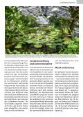 Lankwitz Journal Aug/Sept 2018 - Seite 7