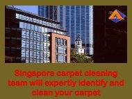 Singaporecarpet cleaning team will expertly identify and clean your carpet