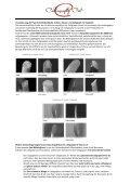 Pressemitteilung Seifritz-Preis_Studie_Calligraphy Cut von Frank Brormann - Page 2