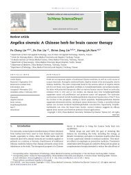 Angelica sinensis: A Chinese herb for brain cancer therapy