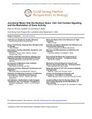 Cell–Cell Contact Signaling and the Modulation of Gene Activity