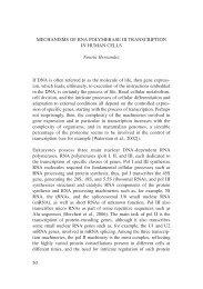 50 MECHANISMS OF RNA POLYMERASE III TRANSCRIPTION IN ...