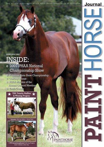 YISC Futurity Stallion & Winning Progeny - Paint Horse Association ...