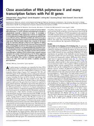 Close association of RNA polymerase II and many transcription ...