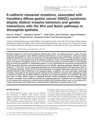 E-cadherin missense mutations, associated with hereditary diffuse ...