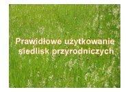 Prawidłowe użytkowanie siedlisk przyrodniczych ... - Baltic Green Belt