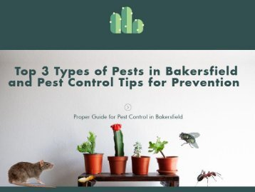 Different Types of Pest and How to Control them | Bakersfield Pest Control