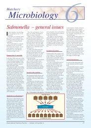 Salmonella – general issues 6 - Positive Action Publications Ltd