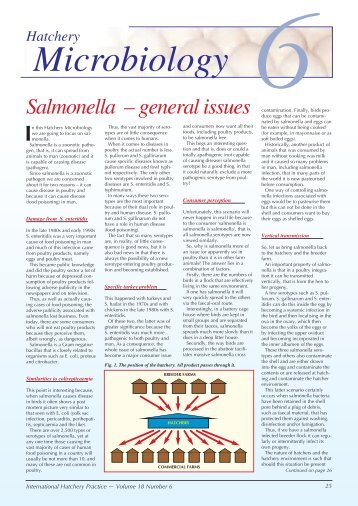 Salmonella – general issues 6 - Positive Action Publications Ltd