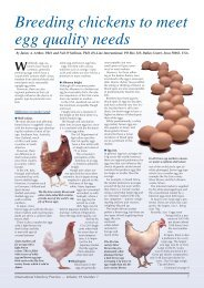 Breeding chickens to meet egg quality needs