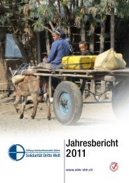 Jahresbericht 2011 - Solidarität Dritte Welt