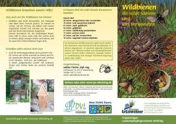 Wildbienen - Landschaftspflegeverband Altötting