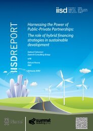 Harnessing the Power of Public–Private Partnerships - International ...