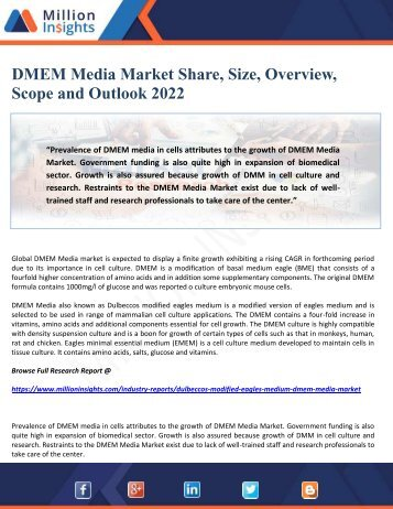 DMEM Media Market Share, Size, Overview, Scope and Outlook 2022