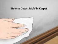 How to Detect Mold in Carpet by Carolina Water Damage Restoration
