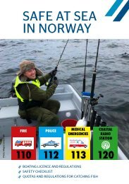 SAFE AT SEA IN NORWAY: INFORMATION FOR TOURISTS 2018