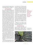 Z21/22 ReformaFiktion 5.5 vorab - Page 5