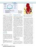 S3-Leitlinie: Analabszess AWMF-Registriernummer: 088/005 - Seite 4