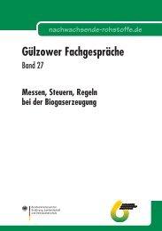 Messen, Steuern, Regeln bei der Biogaserzeugung ... - Biogaspartner