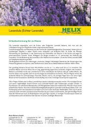 unter - Helix Pflanzen