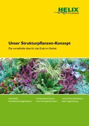 Unser Strukturpflanzen-Konzept - Helix Pflanzen