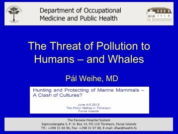 The threat of pollution to humans - and whales