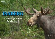A summer paradise for the family - Isaberg