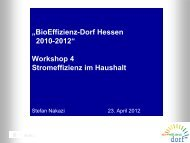 BioEffizienz-Dorf Hessen 2010-2012, Workshop 4, Stromeffizienz im ...