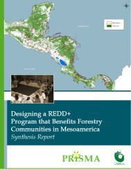 Forests, deforestation, and carbon in Mesoamerica - Prisma