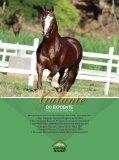 Revista TOP Marchador #57 - Page 4