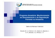 Programa Amazônia: Monitoramento do Desmatamento ... - INPE-DGI