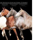 Revista Completa 40 - Page 3