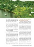 The Brazilian rEDD sTraTegy - Page 6