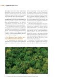 The Brazilian rEDD sTraTegy - Page 7