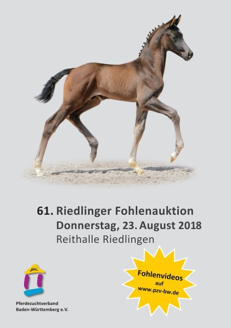 61. Riedlinger Fohlenauktion am 23. August 2018