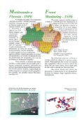 PRODES Analógico 1995-1997 - OBT - Inpe - Page 4