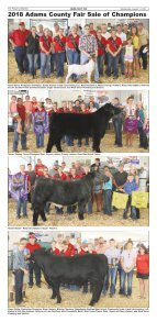 PD Fair 8-1-18-2 - Page 5