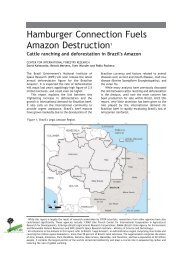 cattle ranching and deforestation in Brazil's Amazon - CIFOR