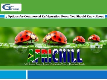 5 Options for Commercial Refrigeration Room You Should Know About