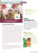 ALN18_08_ES - Page 5