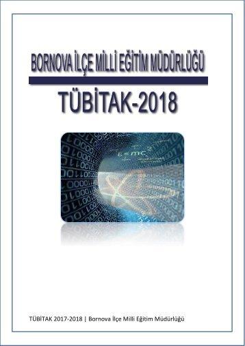 2018 TUBİTAK 4006  BORNOVA