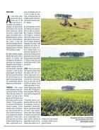 Jornal Cocamar Agosto 2018 - Page 5